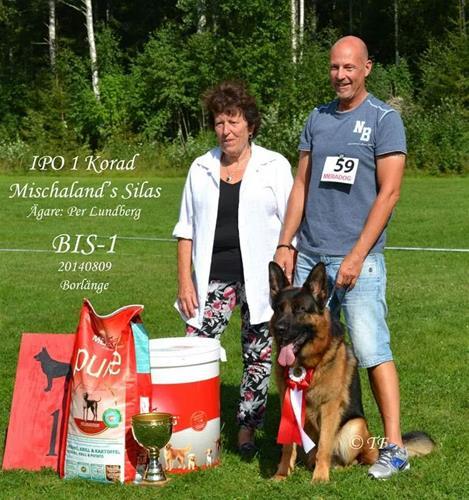 BIS-1  Borlänge 2014-08-09_foto Tina Fridh