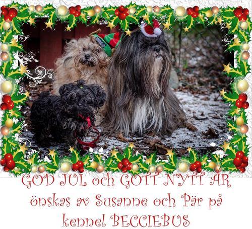 Hundarnas julkort