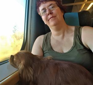 På tåget från Stockholm.
