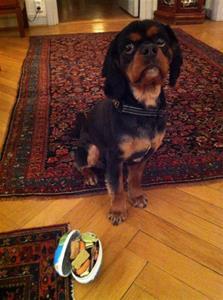 Oskar på dagis