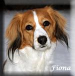 Fiona_0192