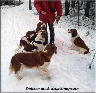 140211_Dokker_100300
