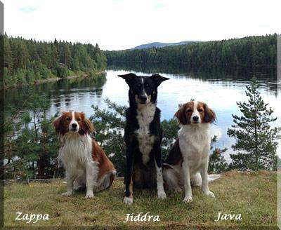 131025_Java