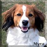 Myra_bild_huv