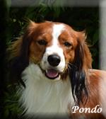 Pondo_0267