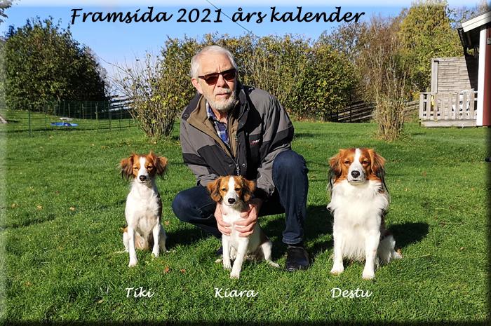 210101_Framsida2021