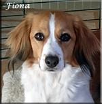Fiona_0967