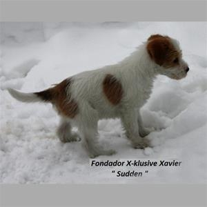 x_kullen_Sudden-Fondador X-klusive Xavier