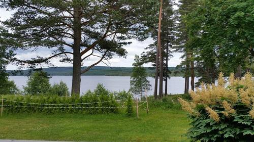 Skogsgläntan_1.2