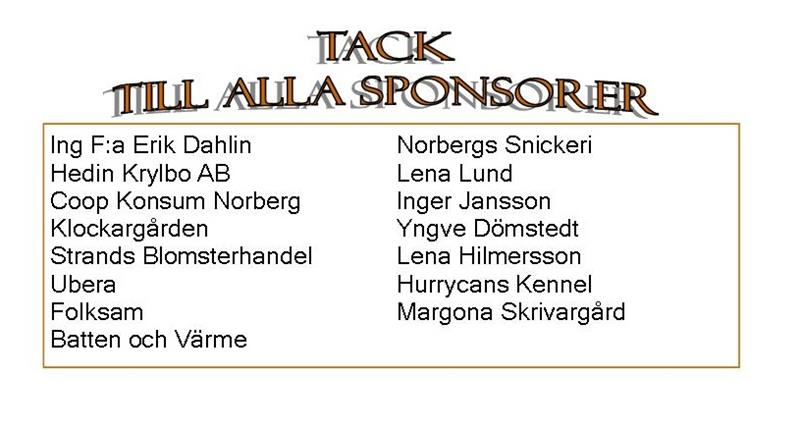 sponsorer 2