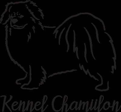 Logo transparent mørk