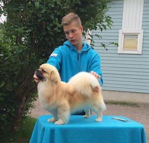 Niklas trener med Zaxon 24.06.16
