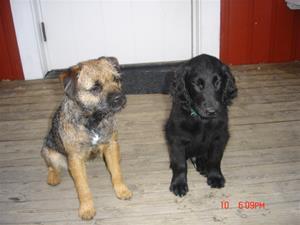 Lexie & Flash