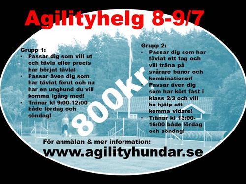 agilityhelg17