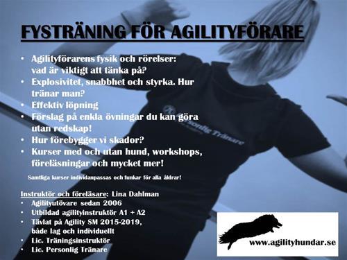 fysträning för agilityförare teaser