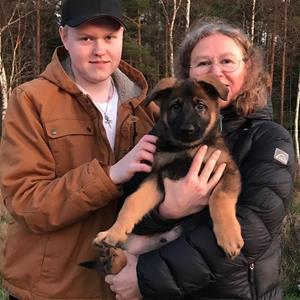 Rindrosens Blixten 8 veckor flyttar till matte Ulla Keinström med familj till Boden