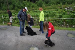 hundskole bilder 062