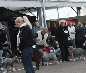 Smilla Malmö 2011