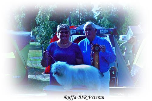 150905 Öland bir veteran