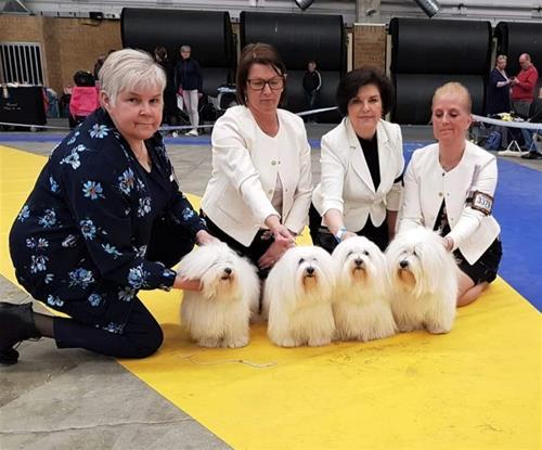 Uppfödargrupp svensk vinnare