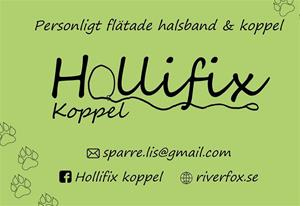 Hollifix