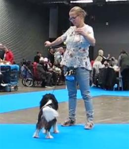 Zolo Mydog