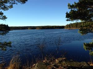 Fin utsikt över Grinnsjön