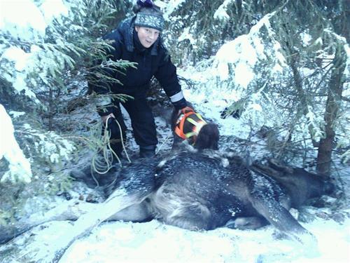 Anki & Molle på eftersök jan 2012