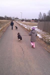liam och mira på promenad