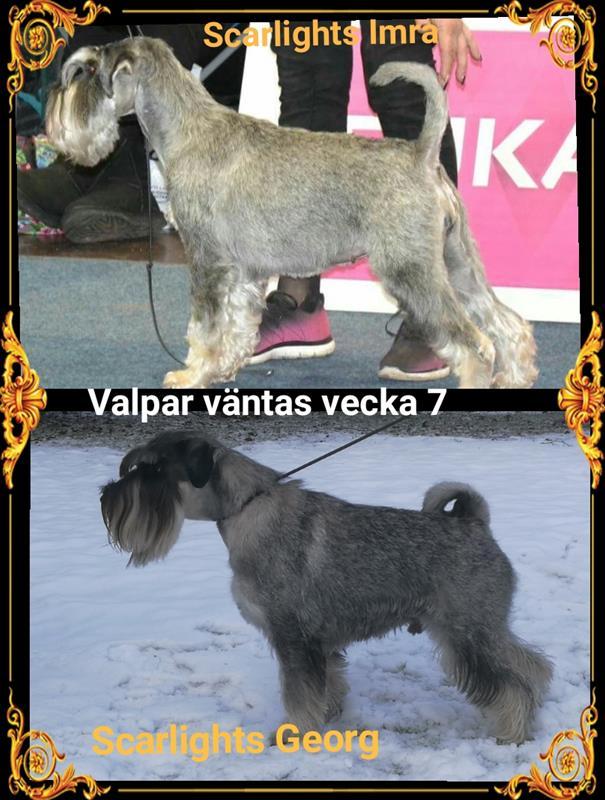 valpar-v7